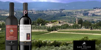 Chianti Classico Gran Selezione Il Grigio 2011